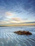 Восход солнца пляжа Thondol белого, Филиппин Стоковые Изображения