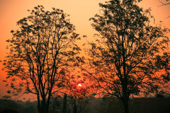 восход солнца раннего утра иллюстрация штока