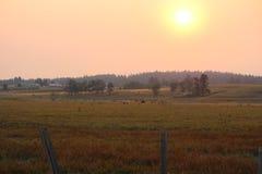 Восход солнца сельского хозяйства Стоковые Изображения
