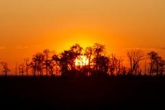 Восход солнца силуэта в охраняемой природной территории Бомбея на Делавере Стоковое Изображение RF