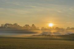 Восход солнца с наземным туманом стоковые фото