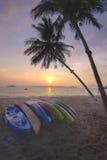 Восход солнца с пальмами шлюпки и кокоса каяка на тропической предпосылке пляжа Стоковые Изображения