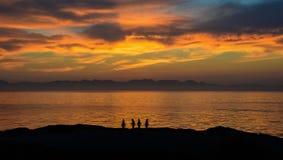 Восход солнца с пингвинами Стоковая Фотография RF
