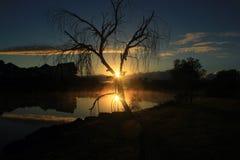 Восход солнца с поверхностным туманом Стоковые Изображения