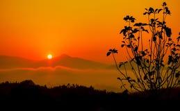 Восход солнца Таиланд Стоковые Изображения RF