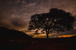 Восход солнца Таиланд Стоковые Фотографии RF
