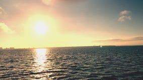 Восход солнца Тампа Стоковое Изображение RF