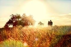 Восход солнца луга Стоковые Изображения RF