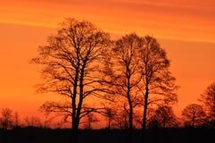Восход солнца утро солнечное Лучи ` s солнца на зоре Стоковые Фото