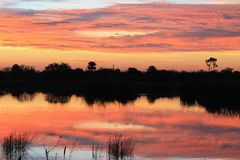 Восход солнца Флориды стоковое фото
