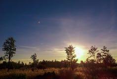 Восход солнца 14 Стоковое Изображение