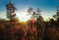 Восход солнца 12 Стоковая Фотография RF