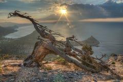 Восход солнца #2 Стоковое Изображение