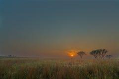 Восход солнца Highveld Стоковое фото RF