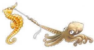 Восьминог и sea-horse Стоковое Фото