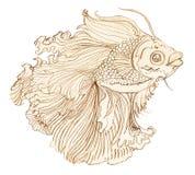 Воюя рыбы вручают вычерченному тайскому декоративноому-прикладн искусству уникально дизайн Стоковая Фотография RF