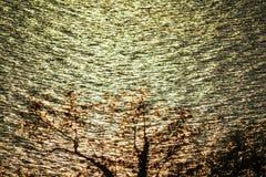 вода вектора картины иллюстрации цвета предпосылки безшовная Стоковое Изображение RF