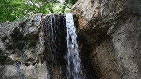 Вода водопада льет от тропиков видеоматериал