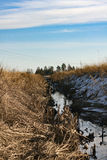 Вода в поле Стоковые Фотографии RF