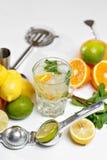 вода лета льда питья цитруса carafe померанцовая Традиционный лимонад с мятой и льдом лимона на белой таблице Взгляд сверху с мяг Стоковое Фото
