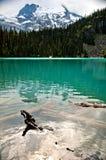 Вода ледника, озера Joffre, Pemberton, Британская Колумбия Стоковое Изображение