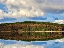 Вода и лес Kielder в парке Нортумберленда, Англии Стоковое Изображение RF