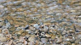 вода идущего потока видеоматериал