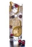 Вода клюквы лимона сверкная Стоковые Фотографии RF