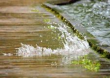 Вода на деревянном следе приходя снизу Стоковое Изображение