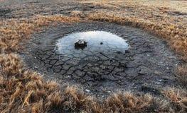 Вода недостатка сухой травы поля сухой травы луга засушливая мертвая мертвая Стоковые Изображения RF