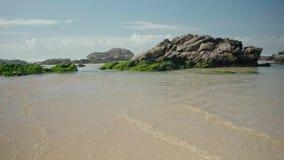 Вода океана с водорослями и утесами акции видеоматериалы