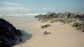 Вода океана с водорослями и утесами сток-видео