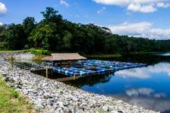 вода отсутсвия влияния контраста высокая Стоковая Фотография