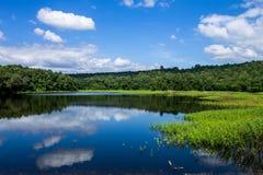 вода отсутсвия влияния контраста высокая Стоковое фото RF