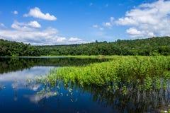 вода отсутсвия влияния контраста высокая Стоковые Фото