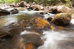 Вода падает каскад на тропическом лесе Стоковое фото RF