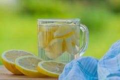 Вода питья лета с лимоном на таблице Стоковая Фотография