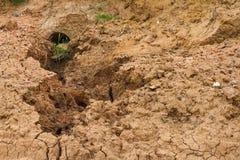 Вода почвы выветрилась утес Стоковая Фотография