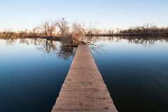 вода прогулки Стоковые Изображения RF
