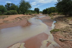 Вода пропуская в реке Стоковые Фото