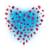 Вода сердца лепестков розы Стоковое Изображение RF