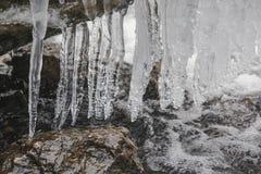 Вода со льдом Стоковые Фото