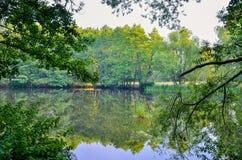 Вода среди растительности Стоковая Фотография RF