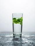 Вода с мятой в стекле стоковые изображения rf