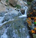 вода Таиланда природы подачи Стоковая Фотография