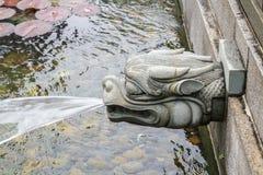 Вода дуновения головы дракона Стоковое фото RF