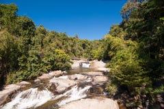 вода яркого захода солнца реки качества слоя джунглей иллюстрации пущи плотного тумана высокого супер тонкая уникально Стоковое Фото