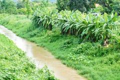 Вода Chanel к полю обрабатываемой земли для аграрной Стоковое Фото