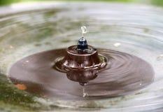 Вода fountain3 Стоковые Изображения RF