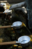 Вода Laddles стоковое изображение